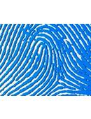 biometric_identification